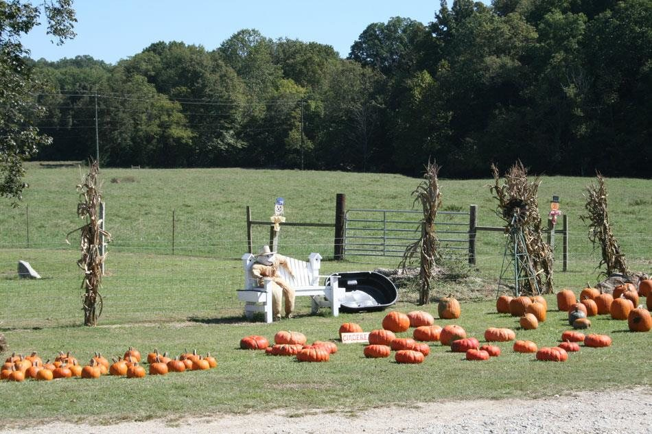 14 The Enchanted Maize At Blowing Freeman Springs